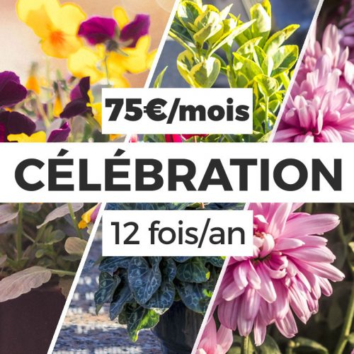 formule-celebration